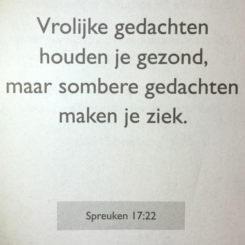 Spreuken 17:22
